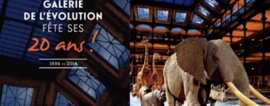 affiche la Grande galerie de l'évolution fête ses 20 ans. Vue intérieure de la galerie éclairée dans la nuit avec les animaux exposés, avançant sur un sol blanc vaporeux, de neige ou de brume