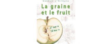 """Affiche de l'exposition """"la graine et le fruit"""""""