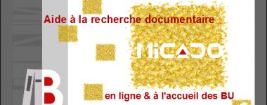 Image numérique avec logos des bibliothèques et de Micado, rectangles dorés sur fond blanc, écritures rouge et blanche, bordure grise
